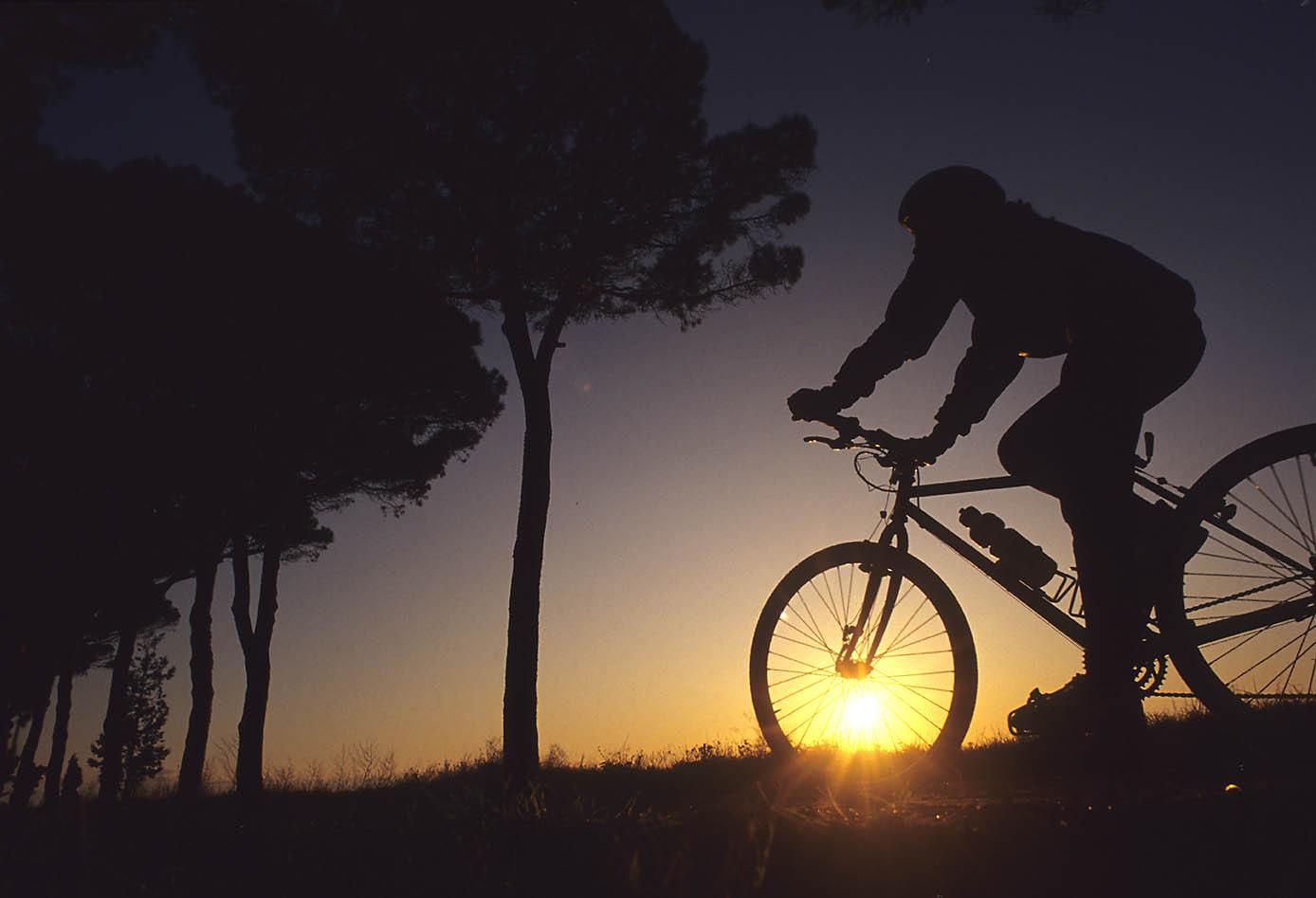 ITALIA, TOSCANA, COSTA DEGLI ETRUSCHI, Castagneto Carducci (LI), in bici in località Pianali.