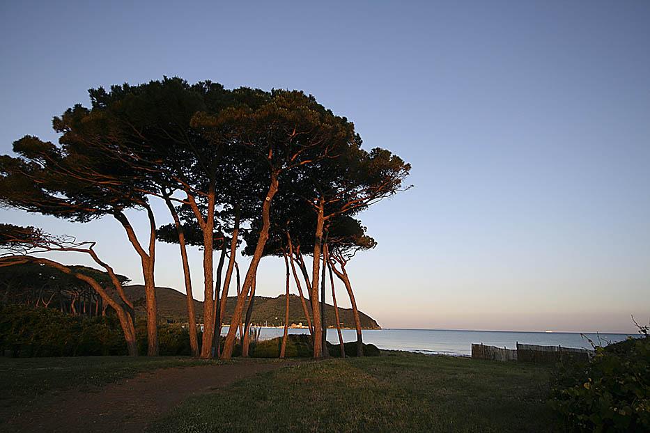ITALIA, TOSCANA, COSTA DEGLI ETRUSCHI, Golfo di Baratti (LI).