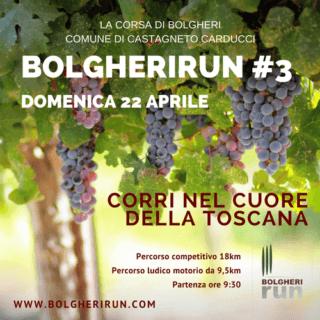 Bolgheri Run - Hotel Zi'Martino