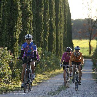 Angebot Fahrradurlaub und Fahrradtourismus Toskana Castagneto Carducci